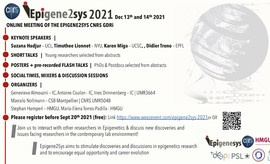 EpiGene2Sys Meeting 2021